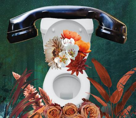 Journée des toilettes